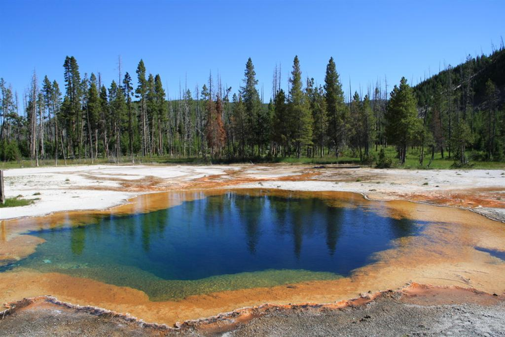Heisse Quelle im Yellowstonepark
